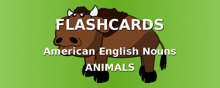 American English Flashcards. Nouns with animals.
