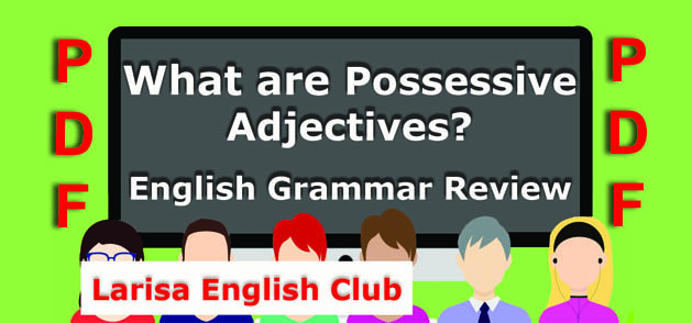 What are Possessive Adjectives PDF