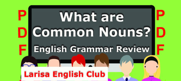 What are Common Nouns PDF