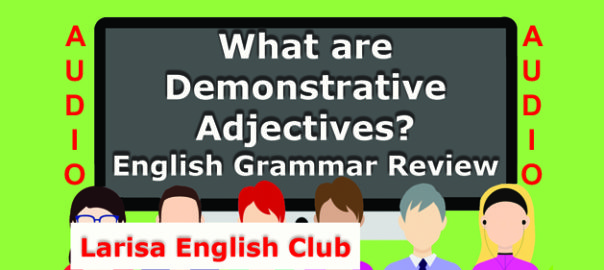 What are Demonstrative Adjectives Audio