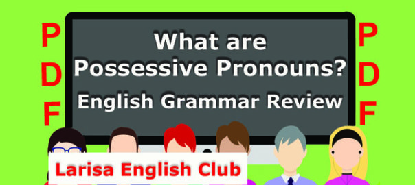 What are Possessive Pronouns PDF